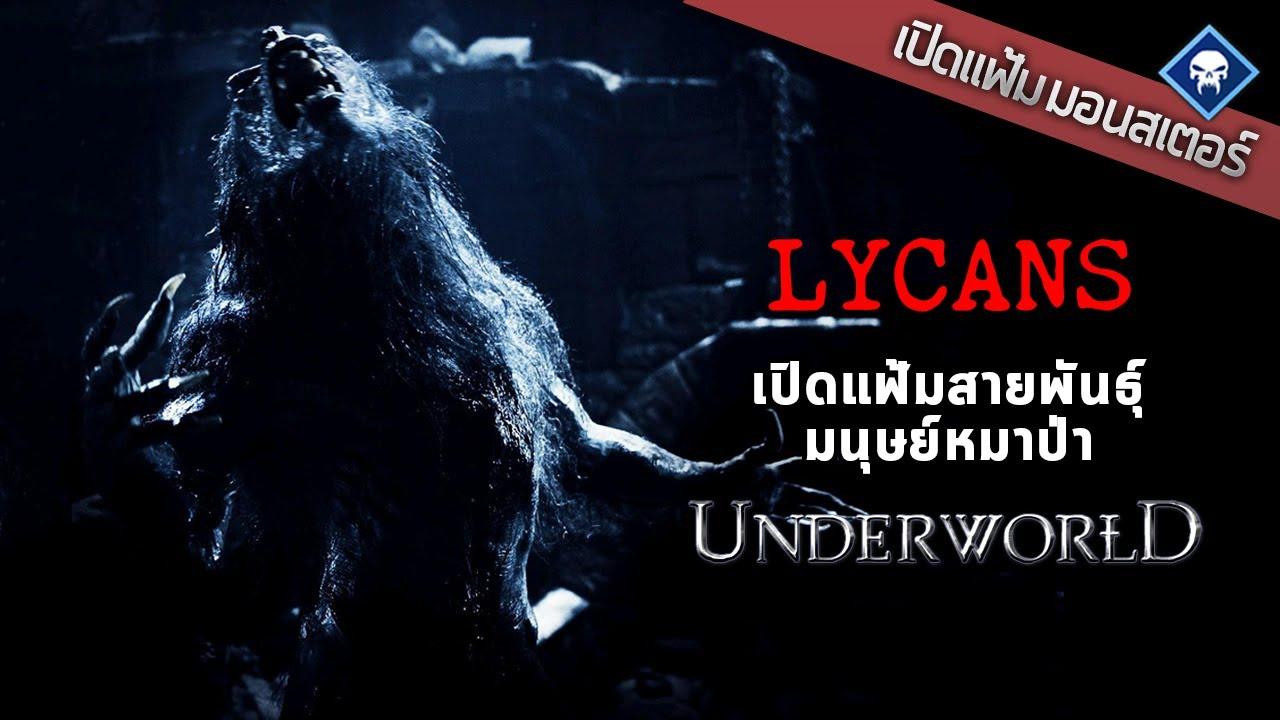 เปิดแฟ้มมอนสเตอร์: Lycans เปิดแฟ้มสายพันธ์ุหมาป่าแห่งสงครามโค่นพันธุ์อสูร | Underworld