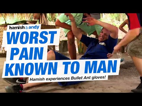 Worst Pain Known To Man | Hamish & Andy