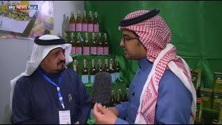 صناعة الزيتون السعودية.. آفاق جديدة للاستثمار