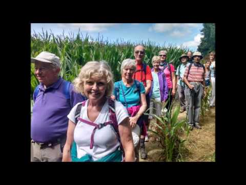 Lulworth Walking    August 2016