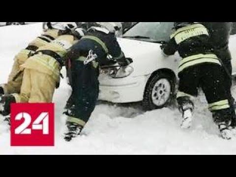 Аномальные морозы в России ударили и по людям, и по моржам - Россия 24