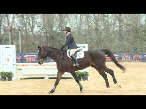 Auburn University Sports - Auburn Equestrian vs South Dakota State Highlights