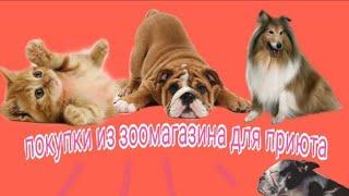 Покупки из зоомагазина/ для собак и кошек/ для приюта