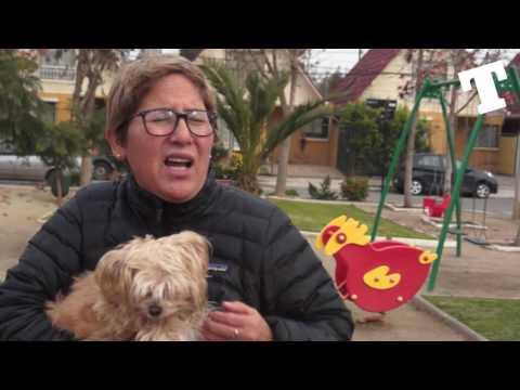 TROPEZÓN | Tenencia Responsable de Animales