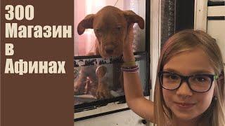 Зоомагазин в Афинах, обзор. Каких животных продают в Греции?(Что можно купить в зоомагазине в Греции. Смотрите в моем видео. Спасибо, что смотрите меня и мои видео для..., 2016-08-19T09:57:00.000Z)