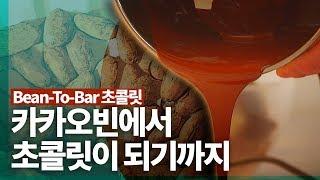 [ASMR] 카카오빈에서 초콜릿이 되기까지(Bean-T…