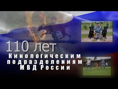 Кинологическая служба МВД России отмечает свое 110-летие