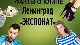 "Факты о клипе Ленинград -""Экспонат"""