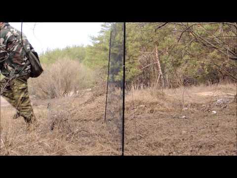 ловля овсянок видео