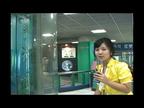[South Korea Gyeonggi-do] Gwacheon public Library of Information & Science