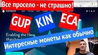 Криптовалюты января - что купить?. GUP, KIN, ECA, TRX, DOGE.