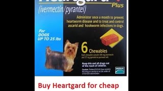 Buy Heartgard Plus For Dogs Online Cheap Without Vet