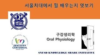 구강생리학 (막전압과 활동전압) - 서울치대에서 뭘 배…