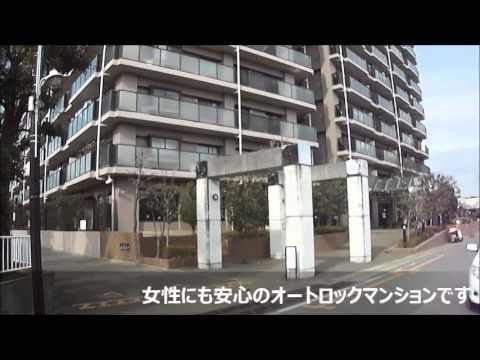 【ピタットハウス北柏店】 トーカンマンション柏ガーデンヒルズ