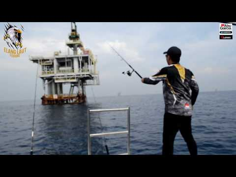 Mancing Mania||Elang Laut Fishing Team||Berburu Monster di l