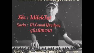 HER YERDE DUYULAN O FON MÜZİĞİ - ( Şiirli .. Mutlaka dinleyin ) Mehmet Cemal Yeşilçay / By Radikal Resimi