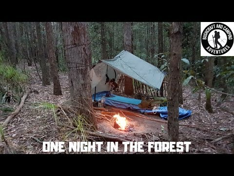 A one-night stay in The Pines, Watagans National Park (New South Wales, Australia)