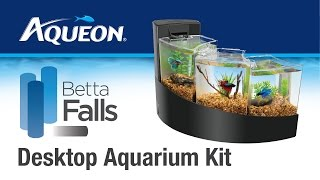 Betta Falls Desktop Aquarium Kit