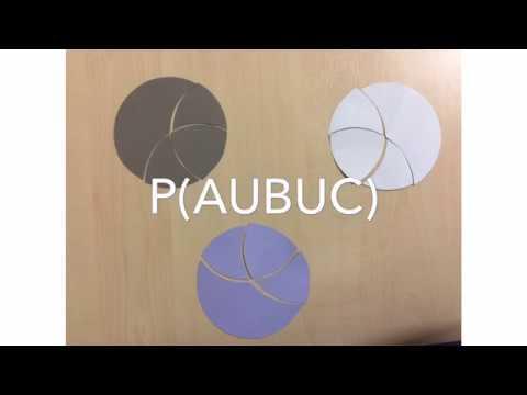 P A U B U C Youtube