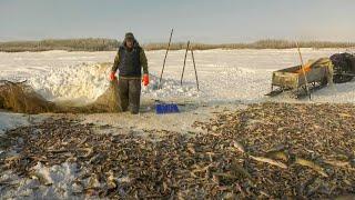Мёртвая вода Загарная рыбалка обских промысловиков С полем