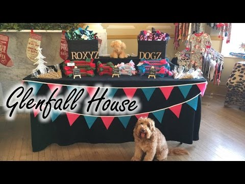 Christmas Dog Dance – Glenfall House Vlog