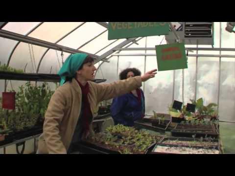 Edible City -- Grow The Revolution! (summary)