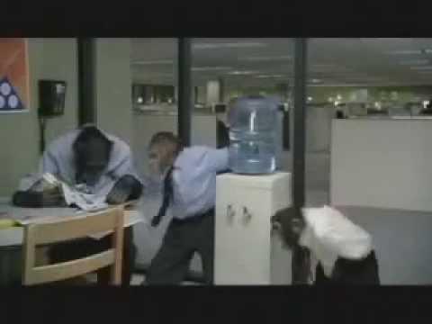 careerbuildercom monkey business pre super bowl monkey commercial youtube