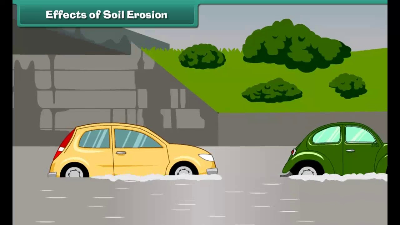 Class 5 EVS - Soil Erosion and Conservation   Science   CBSE - YouTube [ 720 x 1280 Pixel ]