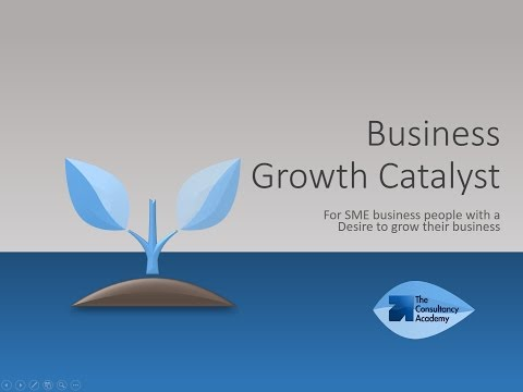 Asian Business Growth Catalyst Presentation