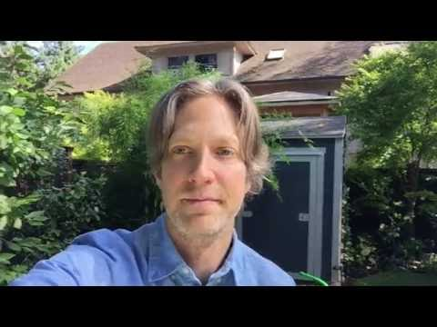 Life Coach Randy Spelling  Why you feel stressed and how to help