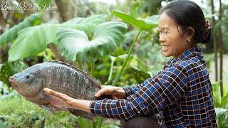 Cá rô phi nấu canh chua me đất đậm đà vị quê nhà (Tilapia Fish Cooked With Oxalis) I Ẩm Thực Mẹ Làm
