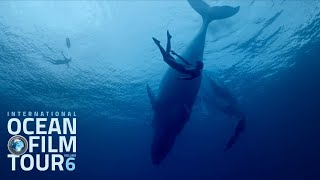 International OCEAN FILM TOUR Volume 6   Official Trailer