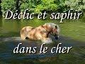 Déclic et Saphir - les poneys dans la rivière