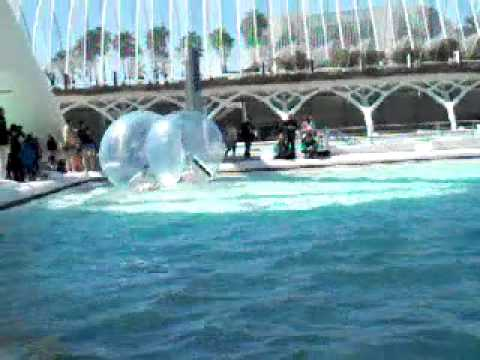 Valencia waterball oceanografico youtube for Oceanografico valencia