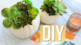 DIY Fall Decor | Ashley Nichole