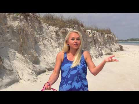 Let's Go! New Smyrna Beach - Beaches