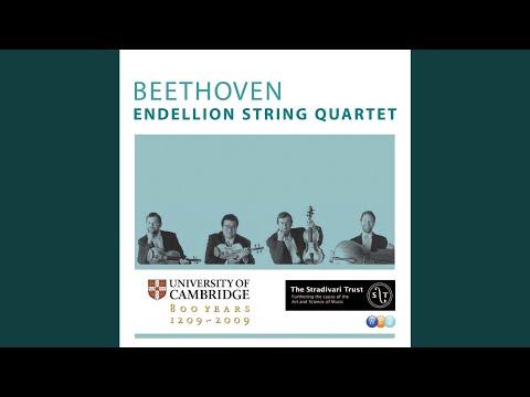 String Quartet No.4 in C minor Op.18 No.4 : I Allegro, ma non tanto