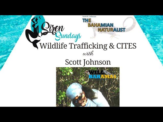 Siren Sundays Season 3 - Episode 4: Wildlife Trafficking & CITES