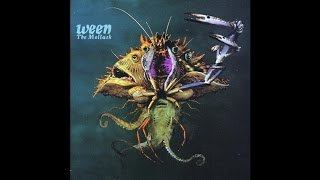 Ween - The Mollusk Sessions - Did You See Me