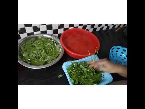 How to clean leafy greens