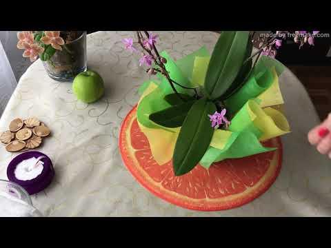Как упаковать цветок в горшке на подарок.How to pack a plant for a gift