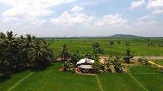 AMAZING BEAUTY OF SRI LANKA (Best vlog of my life)