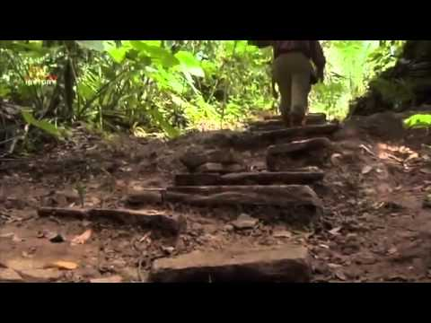 National Geographic Documentary - Passage To The Maya Underworld - Ancient History Documentary