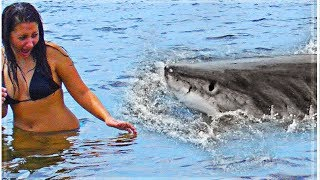 Top 10 MOST DEADLIEST Animals YOU WON'T BELIEVE ACTUALLY EXIST!
