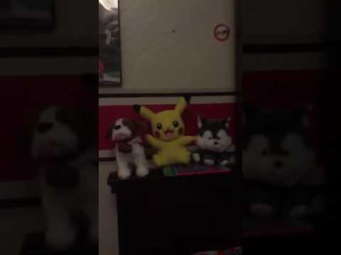 The singing stuffed animals
