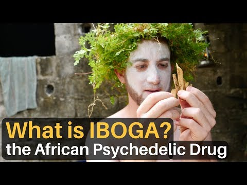 What Is IBOGA? The African Psychedelic Drug...