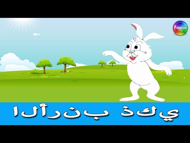 الارنب الذكى - قصص اطفال - كرتون اطفال - قصص العربيه - قصص اطفال قبل النوم - Arabic Story