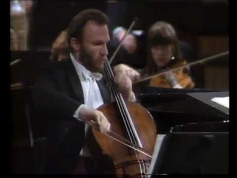 Beethoven Triple Concerto, 1st movement (Part 2 of 2) - Georg Pedersen