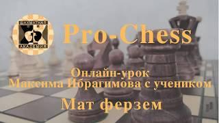 Онлайн-урок Максима Ибрагимова с учеником. Мат ферзём.