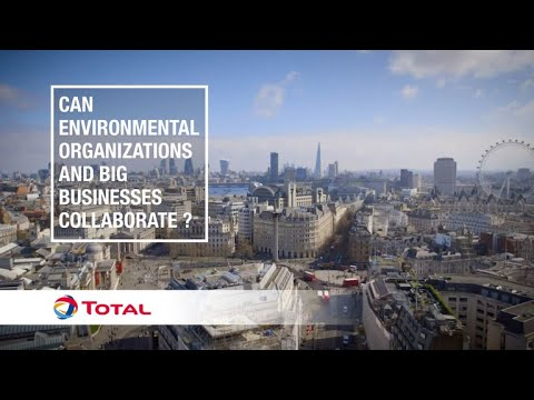 Can Environmental Organizations And Big Businesses Collaborate ? | Sustainable Energy